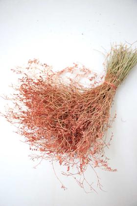 Yapay Çiçek Deposu - Kuru Çiçek Deniz Otu Demeti Kırmızı