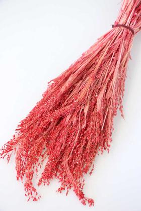 Yapay Çiçek Deposu - Kuru Çiçek Kuş Yemi Bitkisi 45 cm Açık Kırmızı