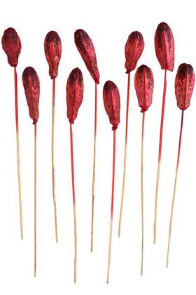 Yapay Çiçek Deposu - 10lu Tropik Mehogany Kuru Çiçek Retro Kırmızı