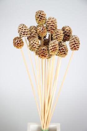 Yapay Çiçek Deposu - Kuru Çiçek 20li Mini Japon Kozalağı
