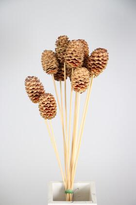 Yapay Çiçek Deposu - Kuru Çiçek 10lu Orta Boy Japon Kozalağı