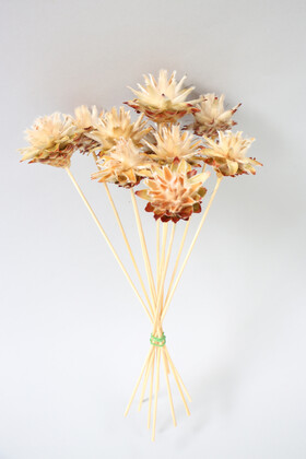 Yapay Çiçek Deposu - Kuru Çiçek 10lu Tüylü Amazon Çileği 28 cm