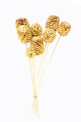 Yapay Çiçek Deposu - Kuru Çiçek 10lu Sarı Rulo Kozalak