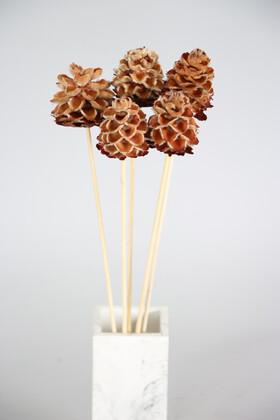 Yapay Çiçek Deposu - Kuru Çiçek 5li Tüylü Mexico Kozalağı 45 cm