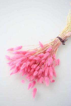 Yapay Çiçek Deposu - Kuru Çiçek Pamuk Otu (Yerli) Şeker Pembe