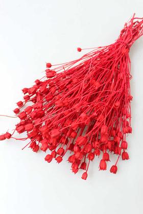 Yapay Çiçek Deposu - Kuru Çiçek Nigella Bitkisi Demeti Açık Kırmızı