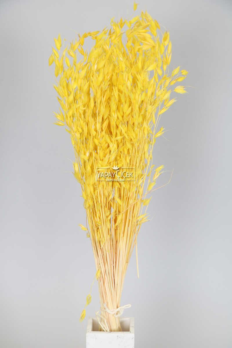 Kuru Çiçek Yulaf Otu Demeti 50 cm Sarı