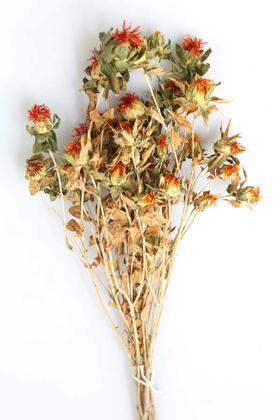 Yapay Çiçek Deposu - Kuru Çiçek Kartamus Naturel