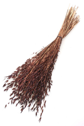 Yapay Çiçek Deposu - Kuru Çiçek Yulaf Otu Demeti 50 cm Kahverengi