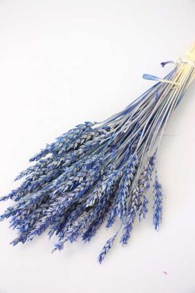 Yapay Çiçek Deposu - İthal Kuru Başak Demeti Mavi