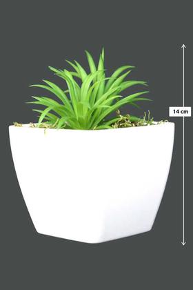 Yapay Çiçek Deposu - Melamin Saksıda Yapay Succulent Sukulent Peperomia ferreyrae 14cm