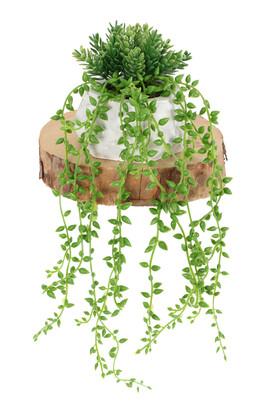 Yapay Çiçek Deposu - Mini Beton Saksıda Sarkan Boncuk Yeşillik
