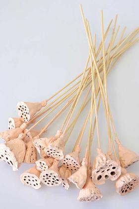 Yapay Çiçek Deposu - 20 Adet Bambu Şiş Saplı Mini Lotus Çiçeği Plant Açık Somon(Gerçek Lotus)