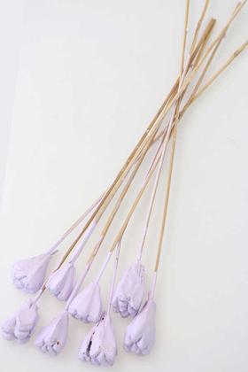 Yapay Çiçek Deposu - 8li Tropik Jack Seed Kuru Çiçek Açık Leylak