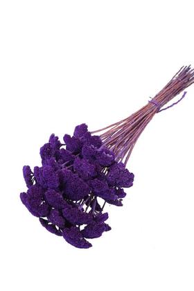 Yapay Çiçek Deposu - Kuru Çiçek Şemsiye Otu Demeti Mor(Özel Kesim)