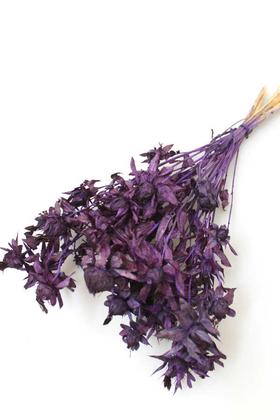 Yapay Çiçek Deposu - Kuru Çiçek Kartamus Mor