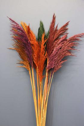 Yapay Çiçek Deposu - Şoklanmış 15li Pampas Otu Karışık Renk 100 cm