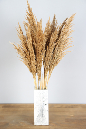 Yapay Çiçek Deposu - İnce Vazoda Kuru Pampas Demeti 50 cm Naturel