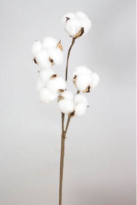 Yapay Çiçek Deposu - 5li Pamuk Dalı 43 cm