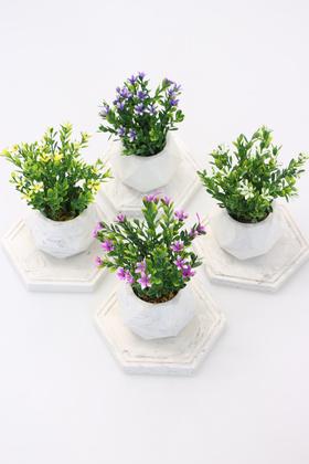Yapay Çiçek Deposu - Tepsili Beton Saksıda Yapay Mine Çiçeği 4lü set