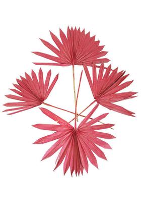 Yapay Çiçek Deposu - 4lü Kuru Tropic Palmiye Yaprağı 40 cm Pastel Kırmızı
