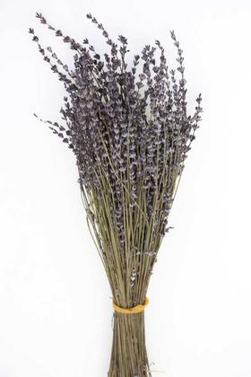 Yapay Çiçek Deposu - Şoklanmış Dökülmeye Dayanıklı Gerçek Lavanta Demeti Antrasit Mor (100 gr)