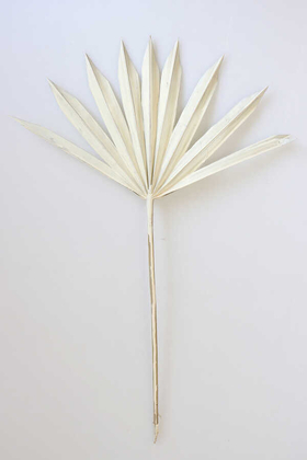 Yapay Çiçek Deposu - 4lü Kuru Tropic Palmiye Yaprağı 40 cm Ekru