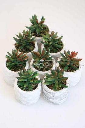 Yapay Çiçek Deposu - 8 Adet Beton Saksıda Yeşil Kızıl Succulent Senecio Plant Set