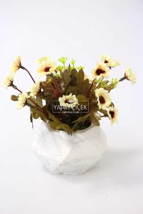 Yapay Çiçek Deposu - Tombul Beton Saksıda Bahar Papatyası Krem