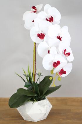 Yapay Çiçek Deposu - Beton Saksıda Yapay Baskılı Islak Orkide 55 cm Beyaz-Bordo