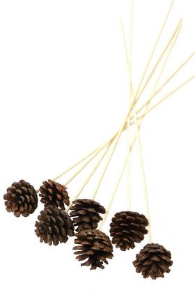Yapay Çiçek Deposu - 7li Çam Kozalak Bambu Saplı Naturel