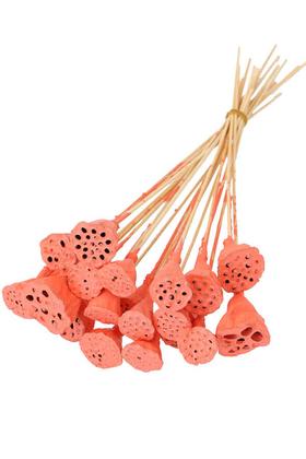 Yapay Çiçek Deposu - 20 Adet Bambu Şiş Saplı Mini Lotus Plant Somon (Gerçek Lotus)