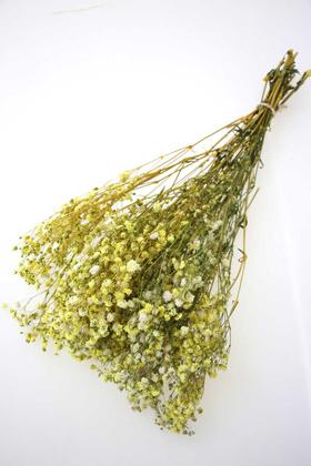 Yapay Çiçek Deposu - Şoklanmis Cipso Demeti Sarı