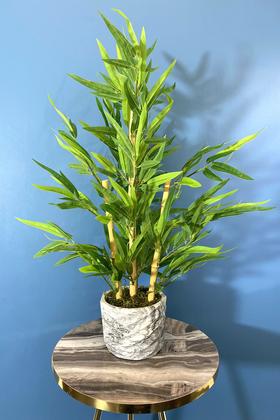 Yapay Çiçek Deposu - Beton Saksıda Lüx Bambu Ağacı Açık Yeşil 65 cm (Yosunlu Model)