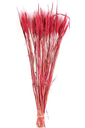 Yapay Çiçek Deposu - Şoklanmış Başak Demeti Kırmızı