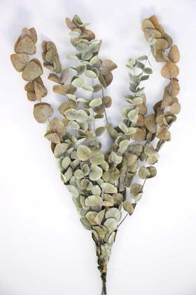 Yapay Çiçek Deposu - Şoklanmis Okaliptus Demeti Naturel(Büyük Demet)