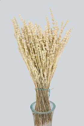 Yapay Çiçek Deposu - Şoklanmış Dökülmeye Dayanıklı Gerçek Lavanta Demeti Beyaz (80 gr)