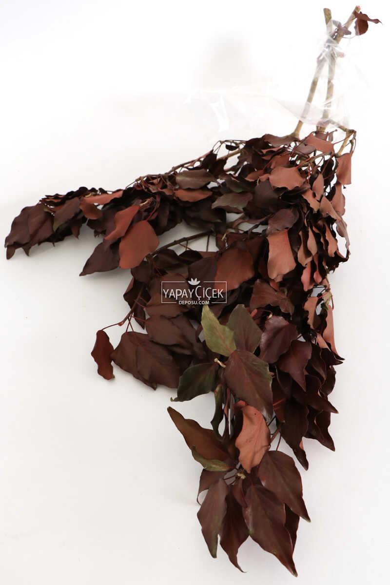 Şoklanmış Huş Ağacı Demeti Kızıl