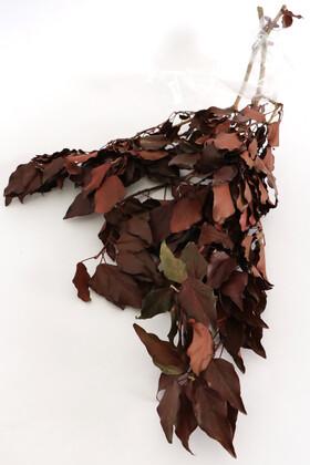 Şoklanmış Huş Ağacı Demeti Kızıl - Thumbnail