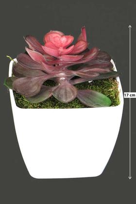 Yapay Çiçek Deposu - Melamin Saksıda Yapay Succulent Sukulent Sedum Makinoi 17cm