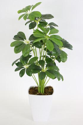 Yapay Çiçek Deposu - Melamin Saksıda Yapay 18 Dallı Lüx Şeflera Bitki 70cm (Schefflera) Koyu Yeşil