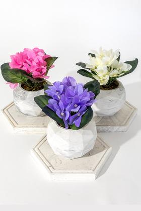 Yapay Çiçek Deposu - Tepsili Beton Saksıda 3lü Menekşe Set