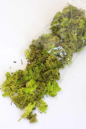 Yapay Çiçek Deposu - İthal Doğal Şoklanmış Teraryum Yosunu 150gr Açık Yeşil