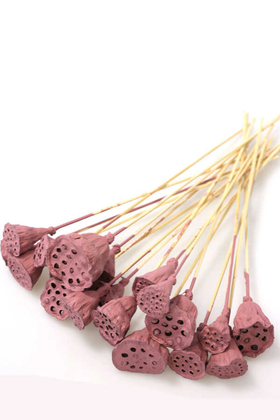 Yapay Çiçek Deposu - 20 Adet Bambu Şiş Saplı Mini Lotus Çiçeği Plant Soft Pembe (Gerçek Lotus)