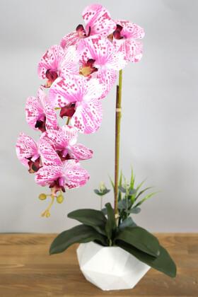 Yapay Çiçek Deposu - Beton Saksıda Yapay Baskılı Islak Orkide 55 cm Fuşya-Beyaz