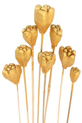 Yapay Çiçek Deposu - 8li Tropik Jack Seed Kuru Çiçek Gold-Altın Renk