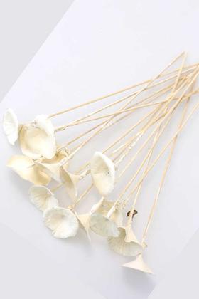 Yapay Çiçek Deposu - 15 Adet Kuru Golden Mushromm Bambu Çubuklu Retro Ekru