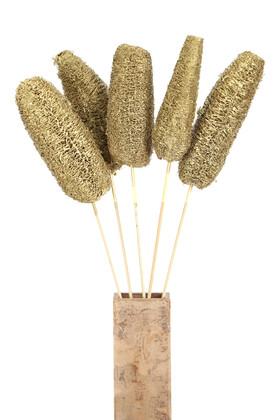 Yapay Çiçek Deposu - Tropikal Luffa Kuru Çiçek Bambu Saplı 5 Adet Gold