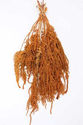 Yapay Çiçek Deposu - Şoklanmış Sarkan Amaranthus Demeti 100 gr Mat Turuncu