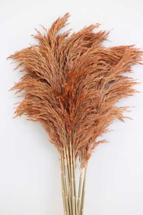 Yapay Çiçek Deposu - Şoklanmış Pampas 14lu Büyük Demet 100 cm(Karamel Turuncu)